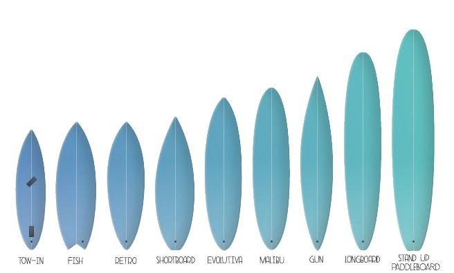 tipos para elegir tu primera tabla de surf